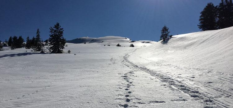 abetone-marzo-2017